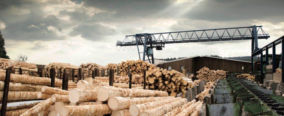 SBP Tvarios biomasės programa