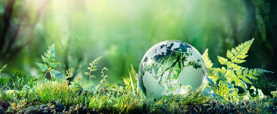ISCC Tarptautinis tvarumo ir anglies dioksido sertifikavimas